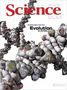 20061222-science.jpg